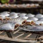 Рецепт приготовления вяленой рыбы